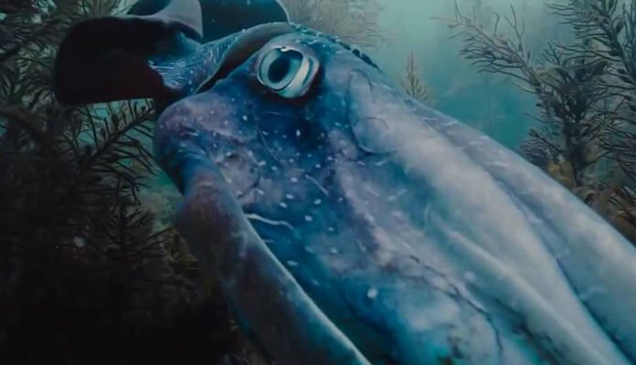 """İlk Fragman: Terrence Malick'in """"Voyage of Time"""""""
